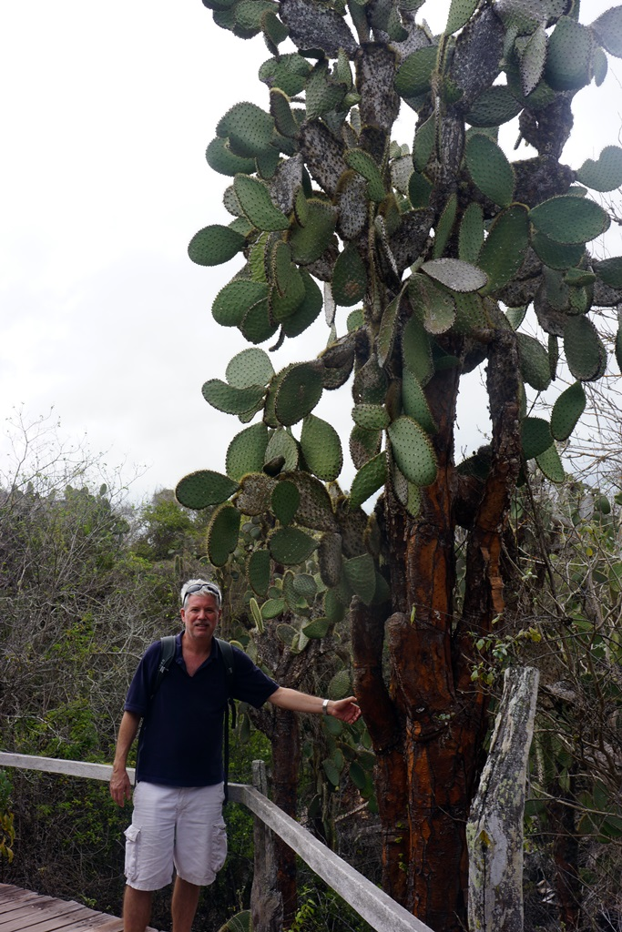 Blake and a cactus tree, Galapagos Islands