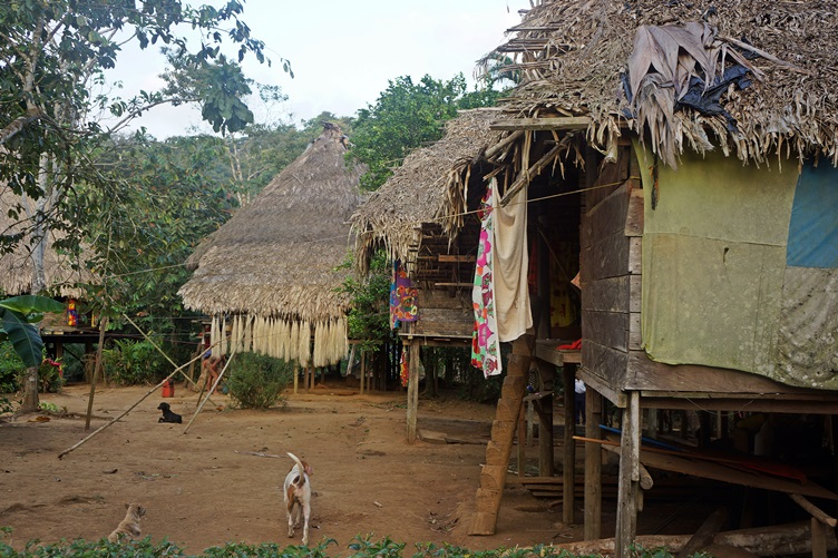 Homes in the Embera Village Panama