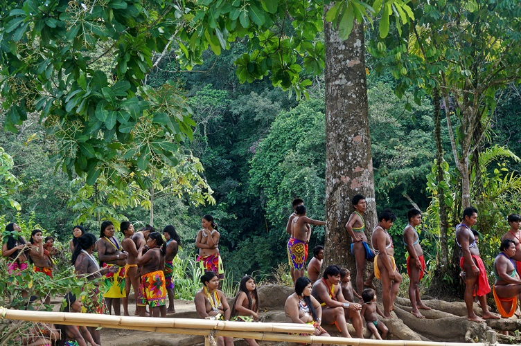 tribe at embera village panama