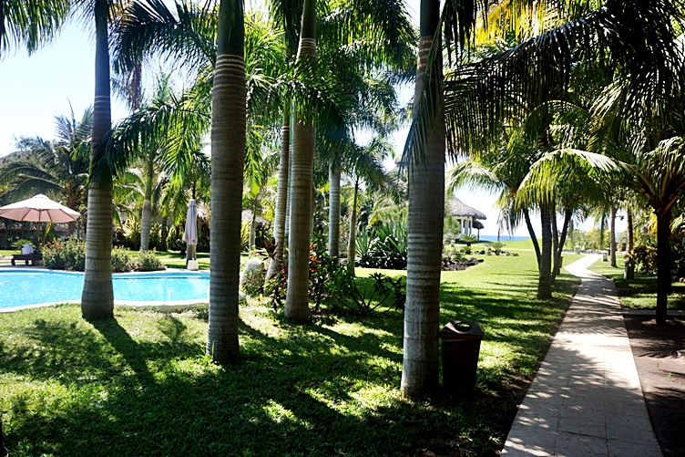 Grounds at Dos Mundos Monterrico
